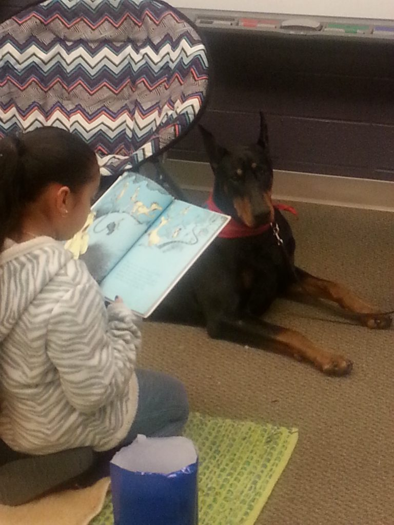 Therapy Dog Reading Time