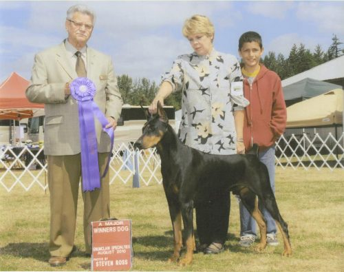 Leonidas Specialty Winners Dog